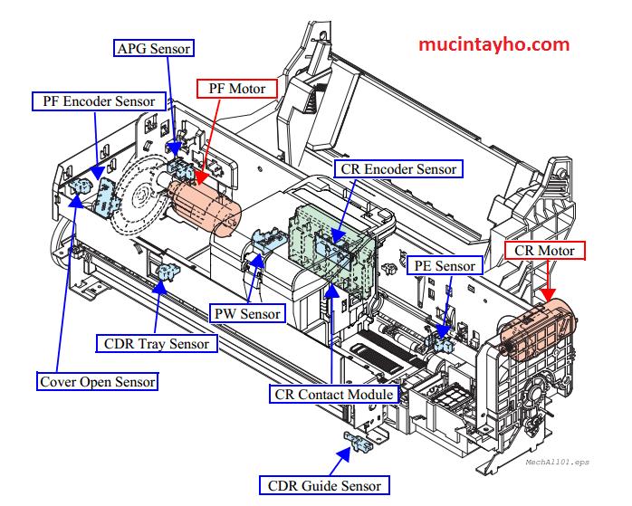 Vị trí cảm biến máy in epson T60 T50
