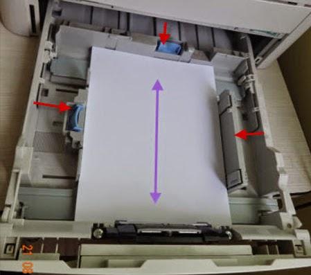 Máy in không kéo giấy